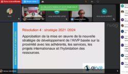 copie d'écran de l'AG virtuelle AIVP